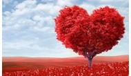 Поздравляем всех с днем святого Валентина!